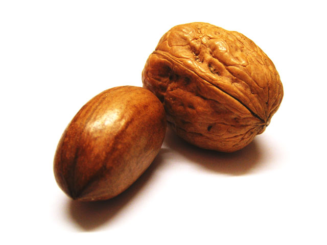 'PECAN: Hi! my name's Tony and I want to scratch your back. WALNUT: Hi my name's George and I'm gonna let ya!