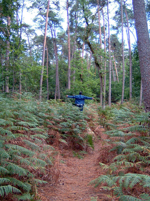 An intrepid blogger standing in a forest (Click for a close-up ... If you dare!)